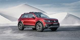 VW Tiguan Active in ePD coated